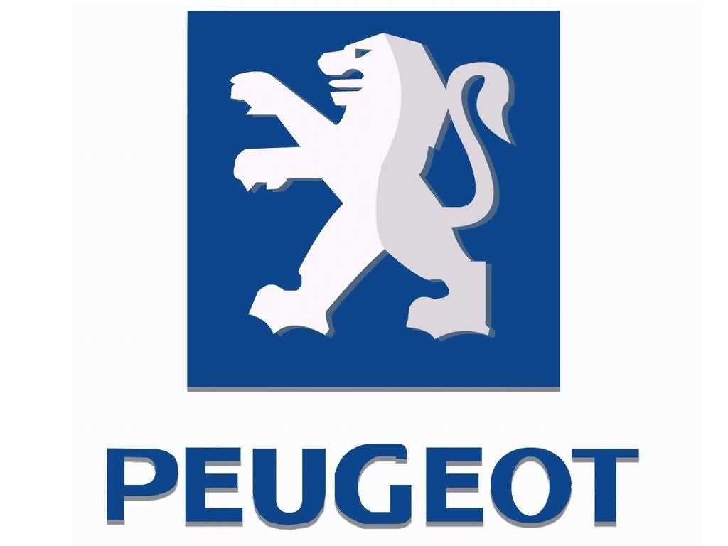Регулировка динамики движения для Запчасти к PEUGEOT