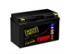 FIAMM 7904487_аккумуляторная батарея! евро 11Ah 150A 150/87/110 FTZ12S-BS moto\